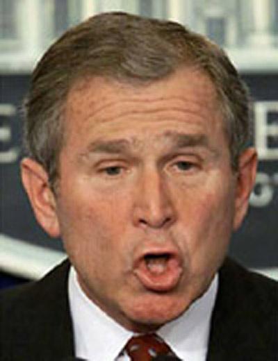 Bush Moron!